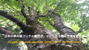 Tree with Mission